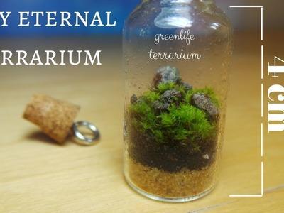 Tiny Bottled Garden - Eternal Terrarium - D.I.Y. Ecosystem