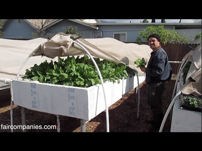 Backyard aquaponics as self-sustained farm in (sub)urban LA