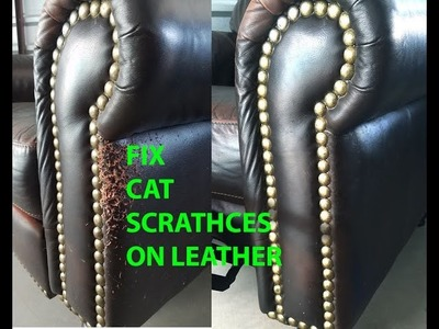 ???? CAT SCRATCH LEATHER REPAIR EASY AND QUICK!