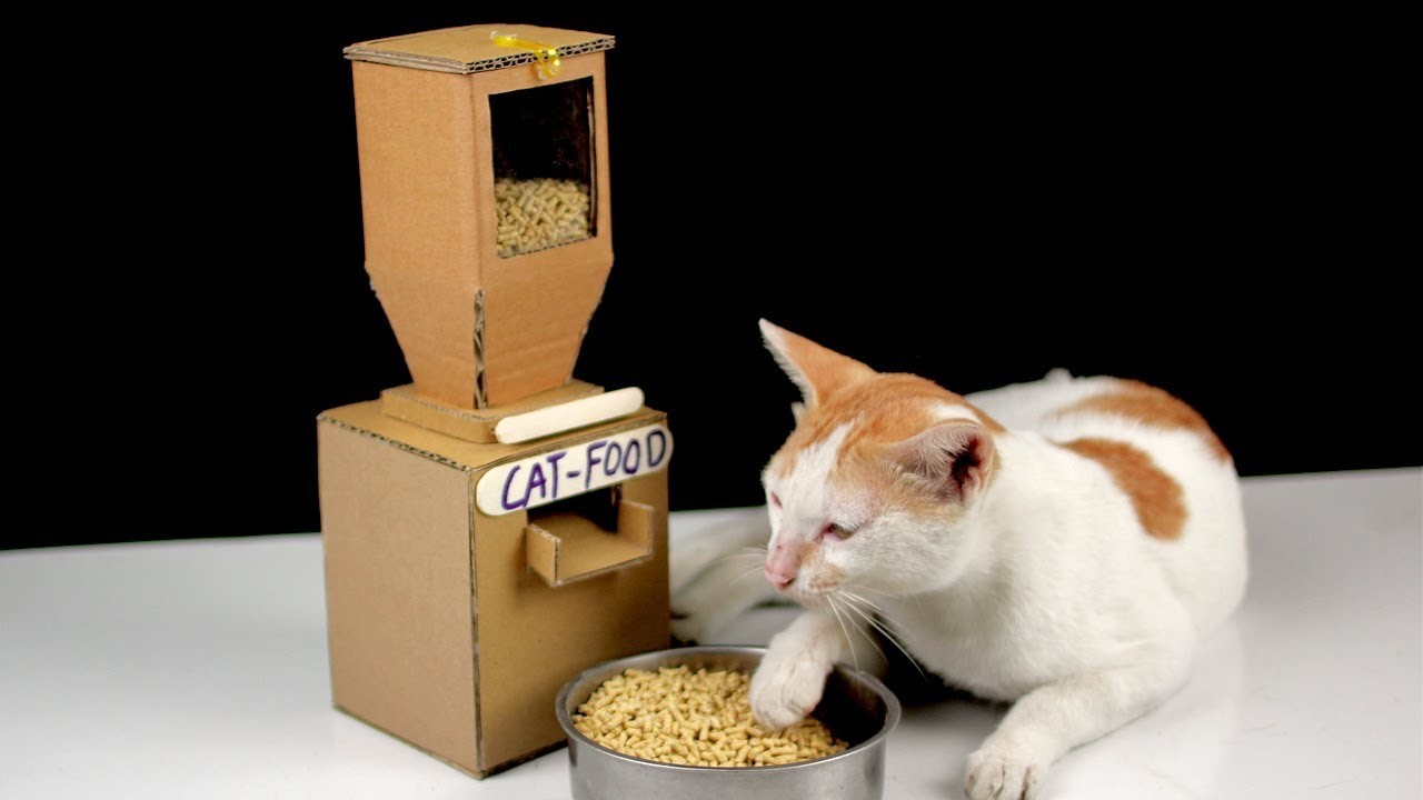 Cardboard Cat Food Dispenser