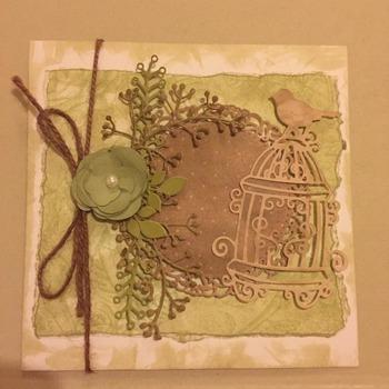 Card #7