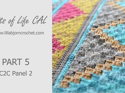 Spirits of Life CAL: Part 5_2 (corner-to-corner crochet again!)