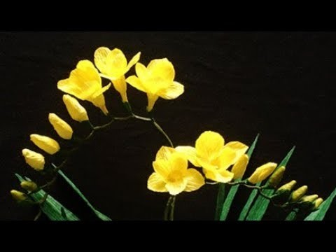 Abc Tv How To Make Freesia Paper Flower From Crepe Paper Craft