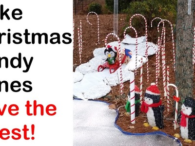 Make a Christmas Candy Cane Forest for your yard