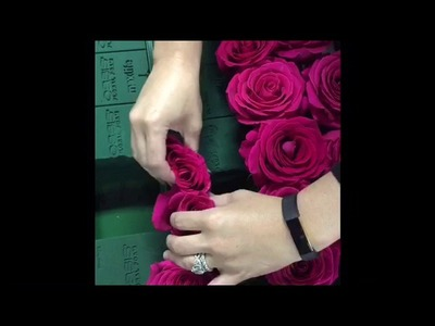 How to create a real rose flower wall