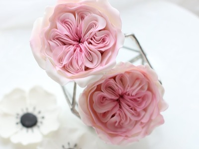 David Austin sugar rose tutorial