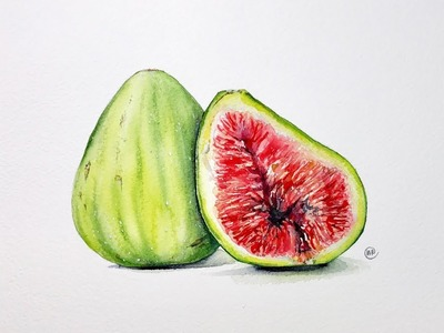 Green Figs in Watercolors Painting Tutorial