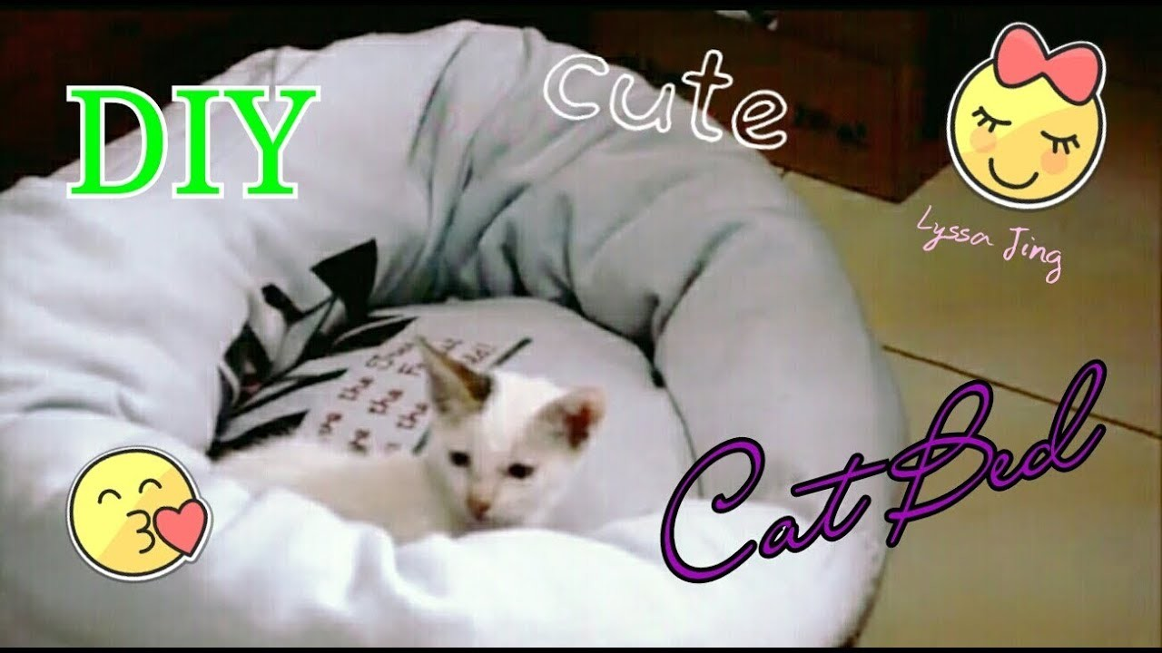 DIY CAT BED from old sweatshirt | (how to) | CHEAP | EASY | FAST