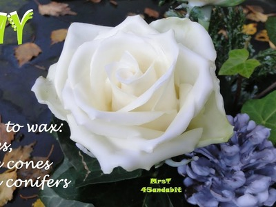 DIY How to preserve roses with wax, waxed pine-cones + conifers. Christmas decorations DekoideenLand