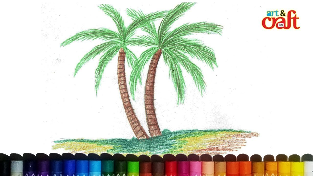 How To Draw Coconut Tree infographics business tqm software