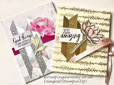 Stunning Mini album from 12 x 12 paper Stampin' Up! products
