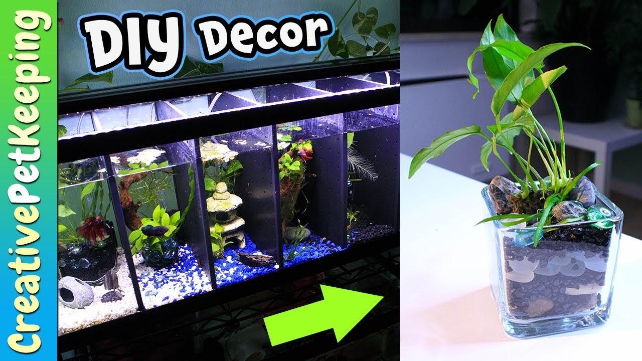 how to build betta fish aquarium