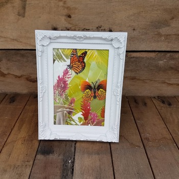 handcrafted ornate white framed orange butterfly picture with jungle background