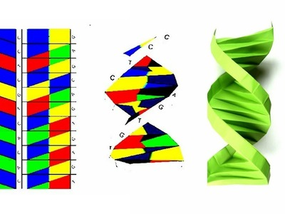 Origami Origami Dna How To Fold A Paper Origami Dna Origami Ent