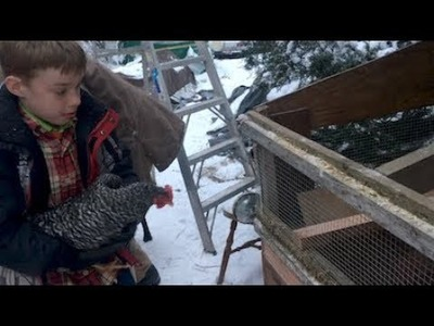 HOMESTEAD PROJECT: winter shelter for the chickens!