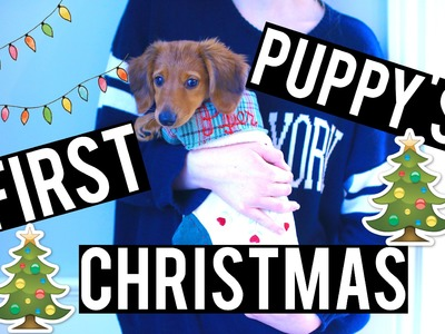 PUPPY'S FIRST CHRISTMAS!   VLOGMAS