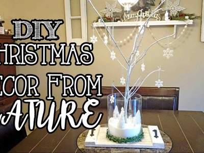 FREE Christmas Decor from Nature