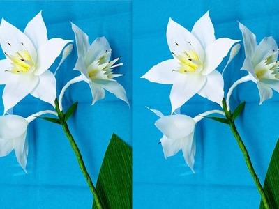 Calla Lily Paper Flowers | Dhea Fatbolous World | 300x400