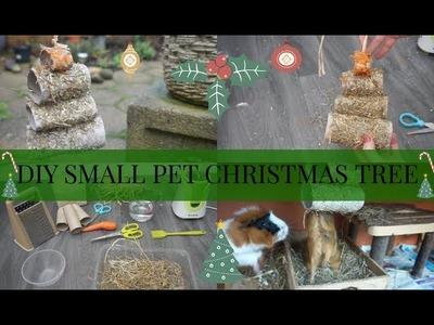 DIY SMALL PET TOY.TREAT - CHRISTMAS TREE | Imy'sAnimals
