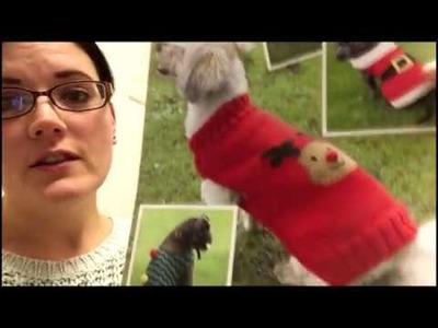 Handmade Knitted Merino Wool Christmas Dog Jumper For Alfie The Puggle!