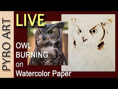 Pyrography: LIVE Wood Burning the Horned Owl on Watercolor paper