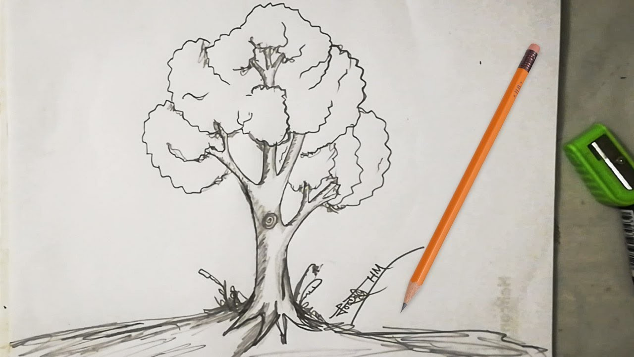 How To Draw Easy And Simple Tree Sketch For Beginners With Pencil