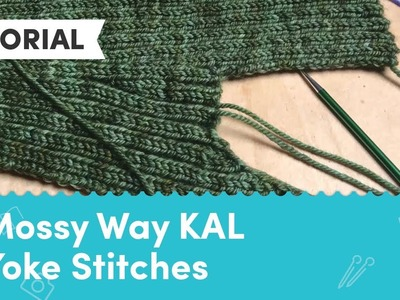 Carol Feller's Mossy Way KAL - Clue 2: Picking up Yoke Stitches