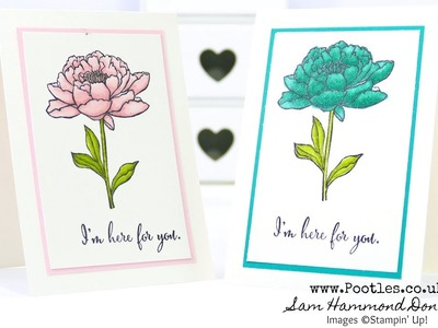 Stampin' Blends Technique How to with You've Got This