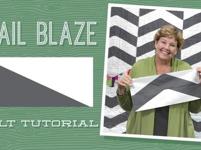 "Make a ""Trail Blaze"" Quilt with Jenny!"