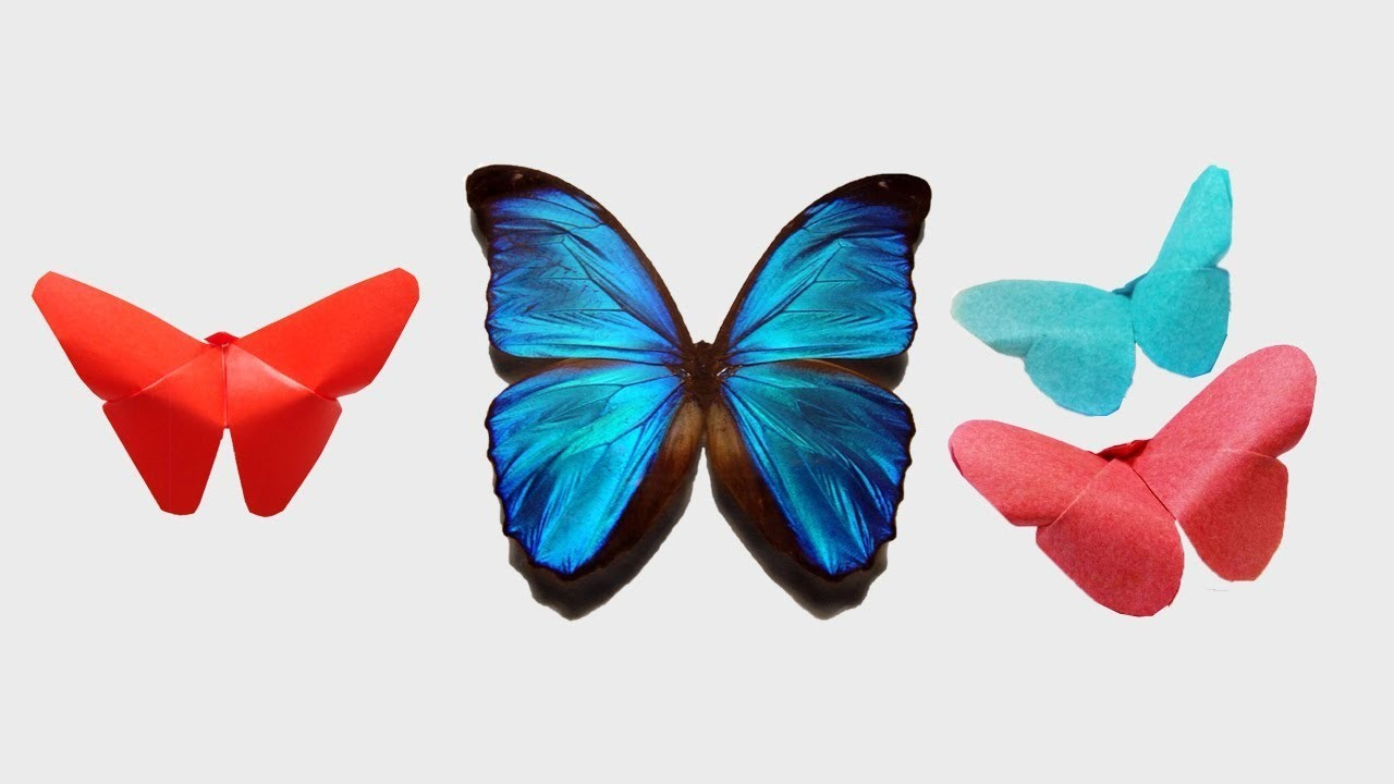 How to make an easy origami butterfly from paper diy room for How to decorate a paper butterfly
