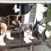 Cocker Spaniel Acrylic Mirror Set