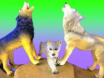 Wild Animals, Wolves, Wolf, Zoo Animals -Jungle Book - Kids Educational Toys - in English