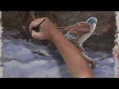 DVD - Painting Birds - The Kestrel with David Hyde