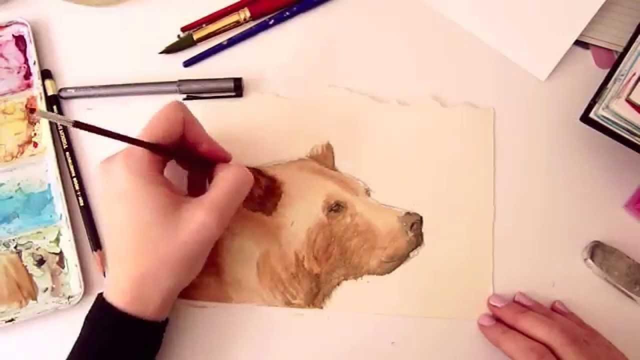Time Lapse Painting : Brown Bear (Sketchbook Journal)