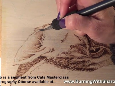 Pyrography: How to Woodburn Realistic Animal Ears