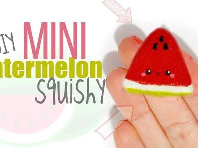 DIY MINI WATERMELON SQUISHY   Memory Foam & Puffy Paint