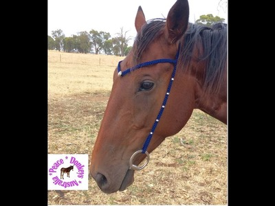 How to make a custom, minimalist bridle, with paracord and beads