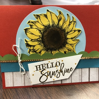 """Hello"" Beautiful Sunflower"