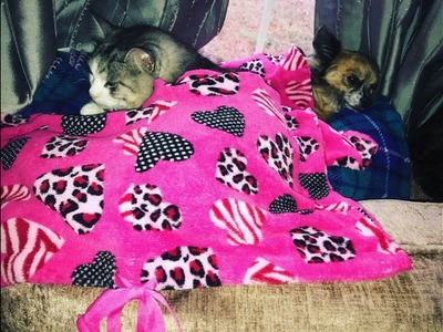 Upcycled Pajama Pet Blankets | Valentine's Day DIY