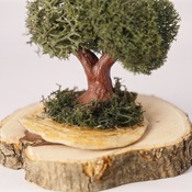 Tree Ornament Standing Trees Reindeer Moss Shell Base Nature Home Decor Handmade (Medium Item)