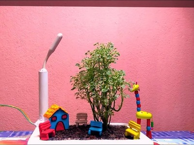 Variegated Aralia As Bonsai || Bonsai For Beginners || Aralia Plant with DIY Items