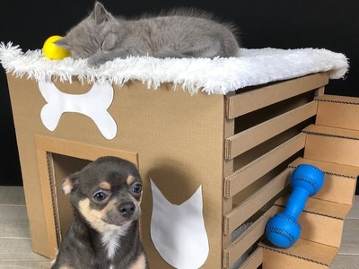 How to Make Amazing House from Cardboard for Puppy Dog and Kitten