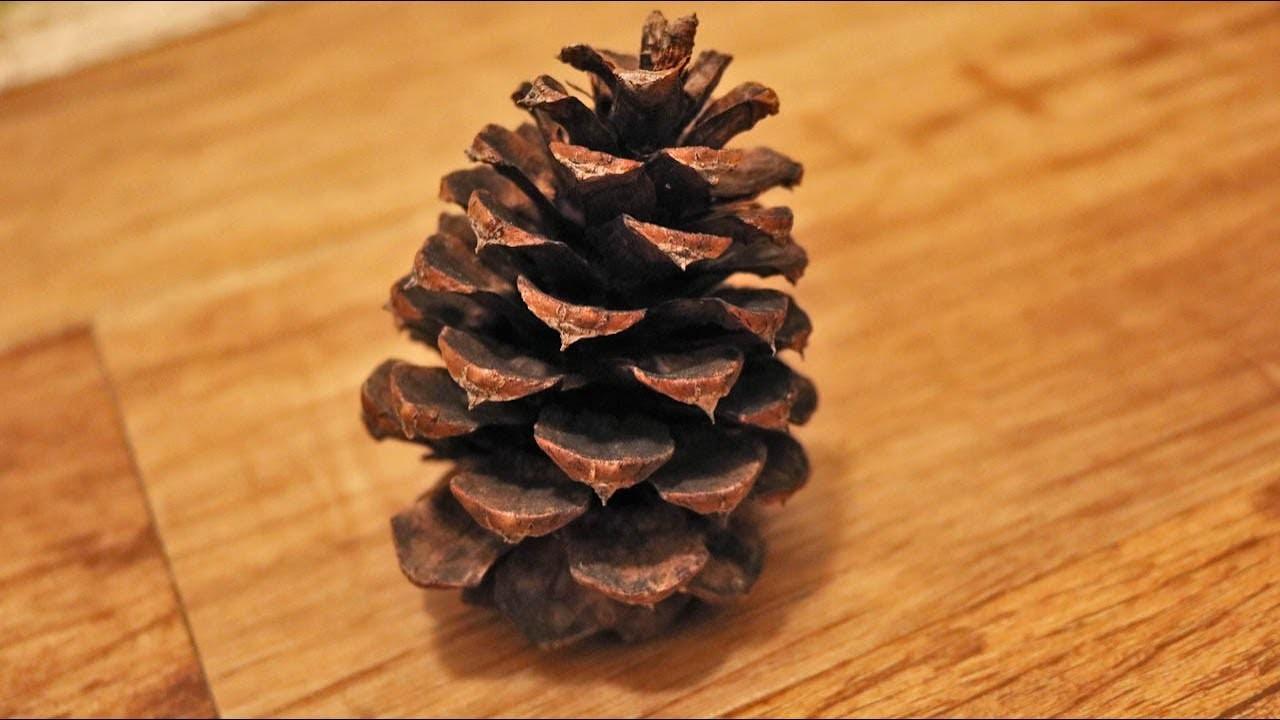 DIY Pinecone Wreath Tutorial