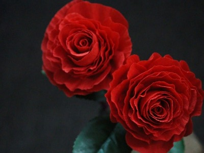 How to make Paper Rose using Duplex Paper