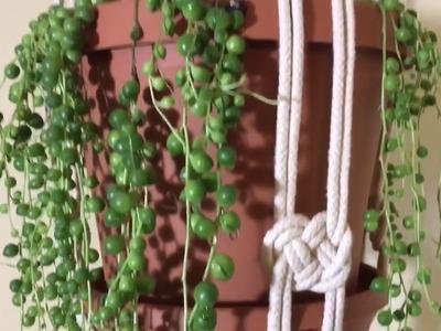How to Make a Macrame Plant Holder