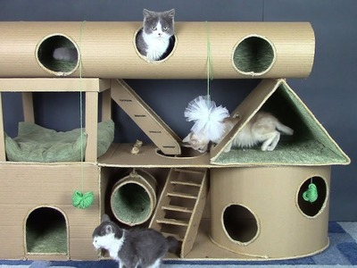 How to Make Amazing Cat Kitten Pet House from Cardboard