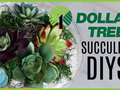DOLLAR TREE Crate & Barrel DIY Dupes! ???? Succulent Terrariums and Bowls
