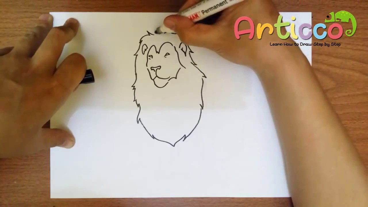 How to Draw a Lion Step by Step Easy