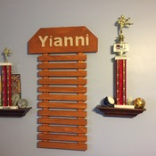 Martial Art Display for 17 Belts & choice of 9 colors     FREE SHIPPING