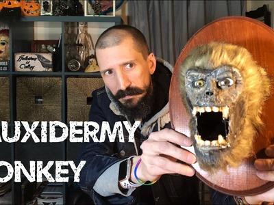 Zombie Monkey Taxidermy - Fauxidermy Tutorial DIY